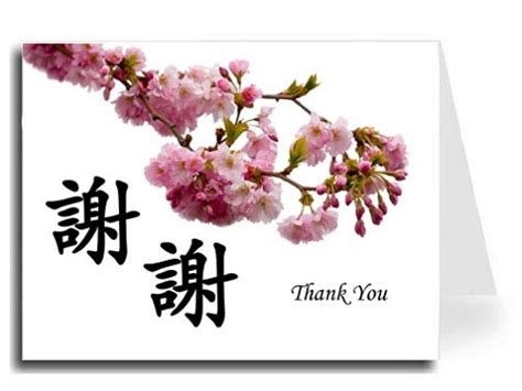 Asian Design Thank You Cards | Calligraphy | Chinese Art